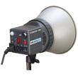 Simpex 300-D Digital